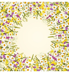 Wild flower frame vector image vector image