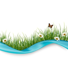 Beautiful flowers and butterflies vector image