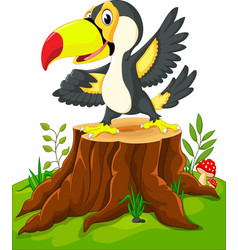 cartoon happy toucan on tree stump vector image