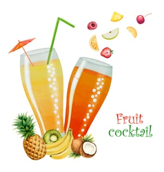 Fruit drink in glasses vector image