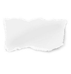 rectangular ragged piece of paper vector image vector image