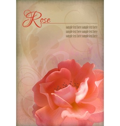 Rose Vintage Old Paper Textured Background vector image vector image