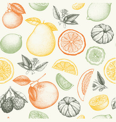 Vintage citrus background in pastel colors vector