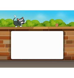Wall Cat White Frame vector image