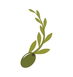 Olive seeds icon vector