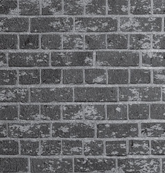 grunge brick wall 2505 vector image