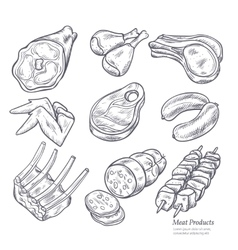 Gastronomic meat products sketches vector