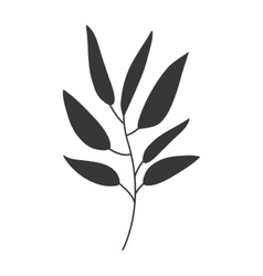 gray scale big leaves olive vector image