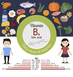 Vitamin b9 or folic acid infographic vector