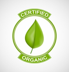 Label or logo with a green leaf for natural vector