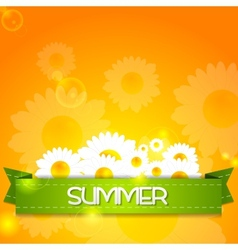 Summer design camomiles and ribbon vector