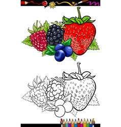 Berry fruits for coloring book vector