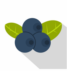 Fresh blueberries with leaves icon flat style vector