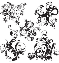 floral design elements vector image