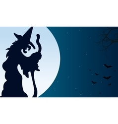 Silhouette of witch and bat halloween vector