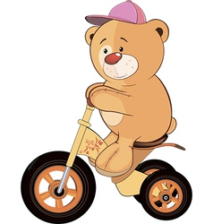 A stuffed toy bear cub and a childrens tricycle vector