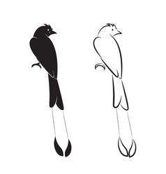 Bird on white background birds icon greater vector