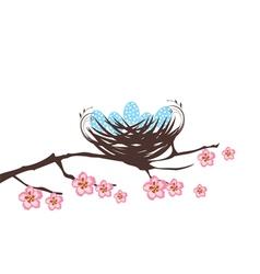 birds eggs vector image