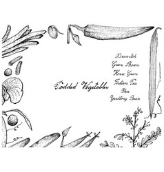 Hand drawn of podded vegetables frame on white bac vector