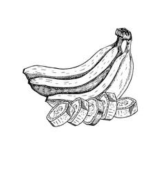 hand drawn set of banana sketch vector image vector image