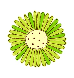 A view of sunflower vector image