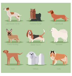 dog flat icons set vector image vector image