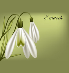 8 march card vector