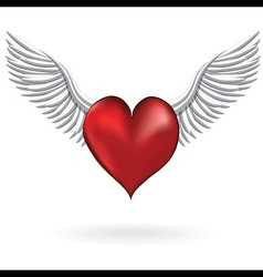 Red heart with wing love symbol vector
