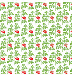 background pattern with tomato plant vector image vector image