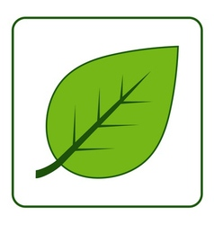 leaf green icon vector image
