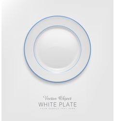 Ceramic plate with a blue border vector