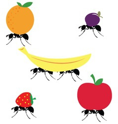 Ants carrying different fruits vector