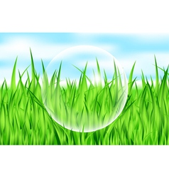 Drop on grass vector