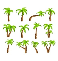 Cartoon green palm trees on a white background vector image