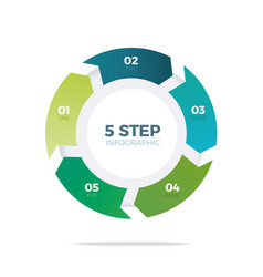 Five step circle infographic vector