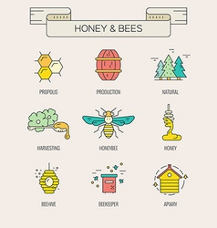 Honey symbols vector