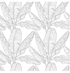 Banana leaves pattern vector