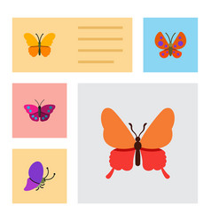 Flat moth set of summer insect butterfly moth vector