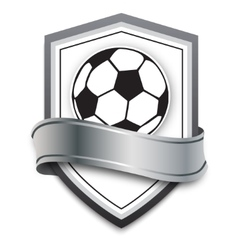 Soccer ball on the silver background vector