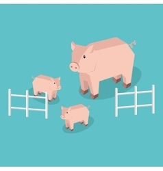 Isometric pig with piglets isolated vector
