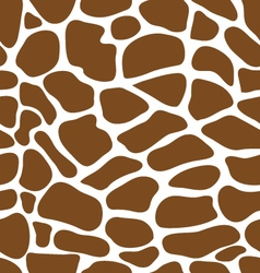 Leather of giraffe vector
