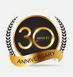 template 30 years anniversary vector image