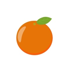Tasty juicy tangerine orange fruit christmas vector