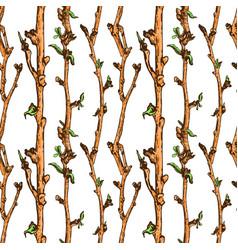 apple tree sketch pattern 1 vector image vector image