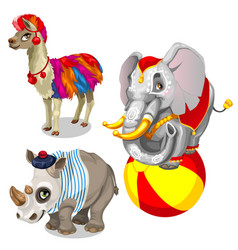 animals from circus llama elephant rhinoceros vector image