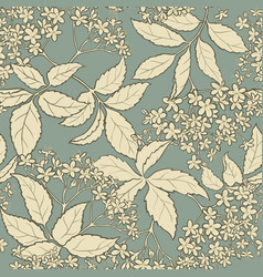 Elderflower pattern vector