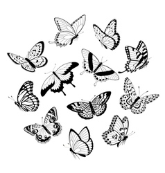 Flying black white butterflies vector