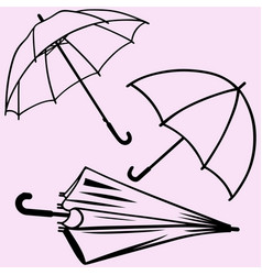 Umbrella silhouette vector