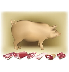 Pig and pork vector image