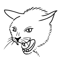 Angry cat vector